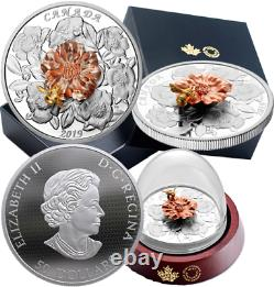 2019 The Bumble Bee and the Bloom $50 5OZ Pure Silver Proof 65.25mm Canada Coin